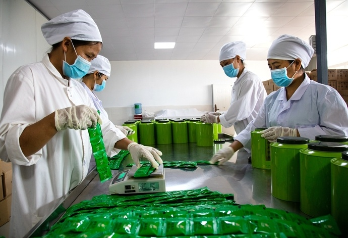 中国最大的辣木品牌「云天佑」 辣木企业