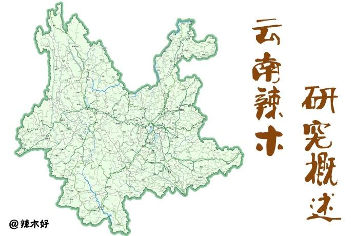 云南辣木研究概述 中国辣木