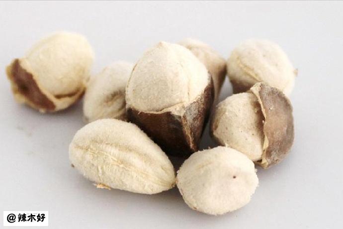 辣木籽的苦涩与甘甜的味觉,值得用一生回味