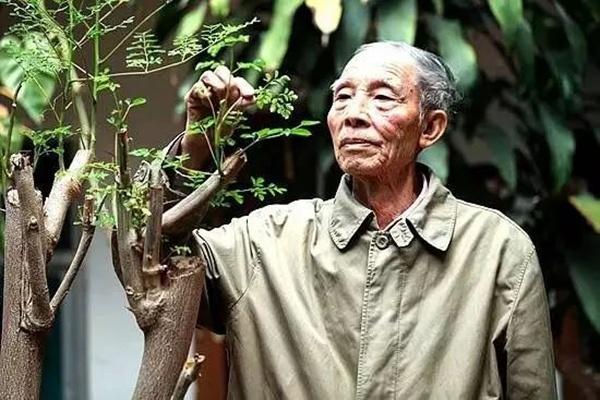解培惠:把辣木变成未来的粮食(云南网)