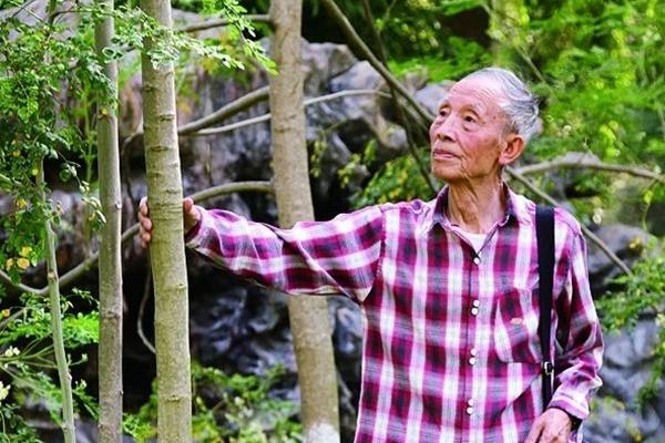 解培惠:辣木是人类赖以生存的重要基础物质之一(中新网)