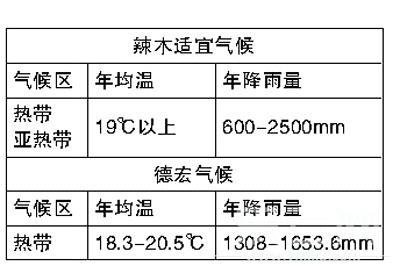 解培惠:吃树叶的时代一定会到来(云南信息报) 中国辣木
