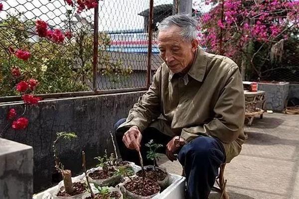 创业酷老头传奇之解培惠——种出来的青春(CCTV2)