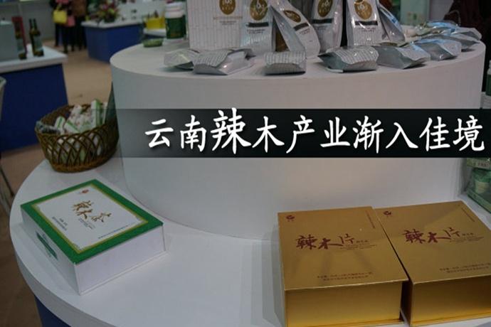 云南辣木产业渐入佳境(中国新闻网)