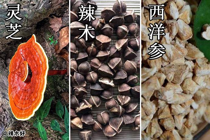 世界三宝:中国的灵芝、美国的西洋参、印度的辣木,被誉为世界三宝!