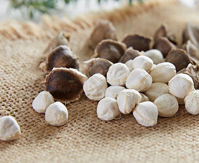 """它是世界植物""""黄金素食"""",家里有它就没有胖子 辣木籽"""
