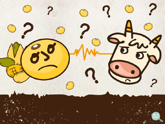 动物奶 VS 植物奶,谁更健康? 健康百科
