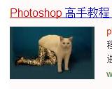 GIF发源地 - GIF求出处以及GIF发源地 liuliushe.net六六社 第9张