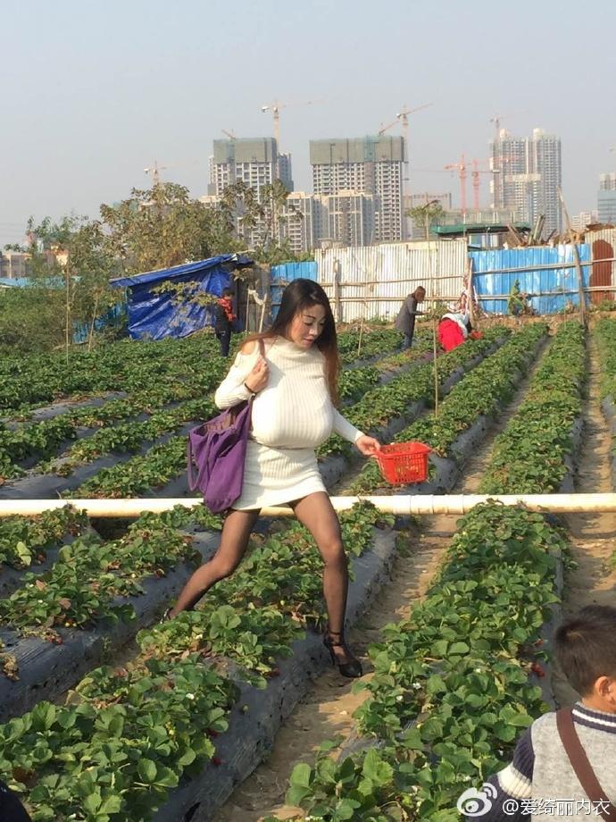 巨乳少妇一起摘草莓