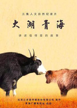 大湖青海电影海报