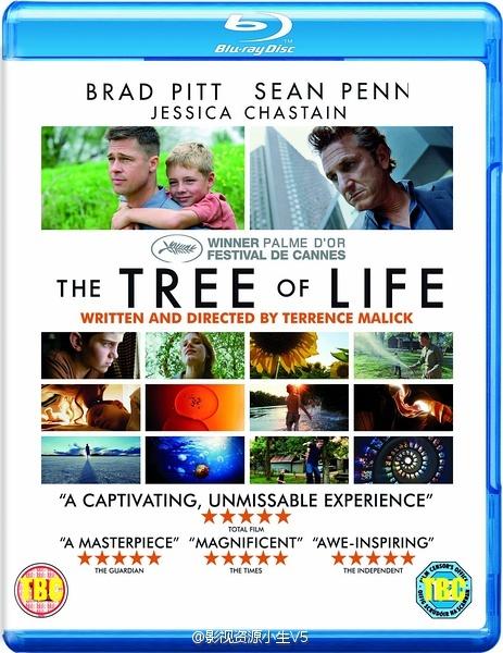 生命之树 2011.HD720P 迅雷下载