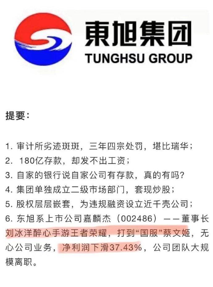 国服蔡文姬:上市公司董事长打游戏就是这么朴实无华 liuliushe.net六六社 第1张