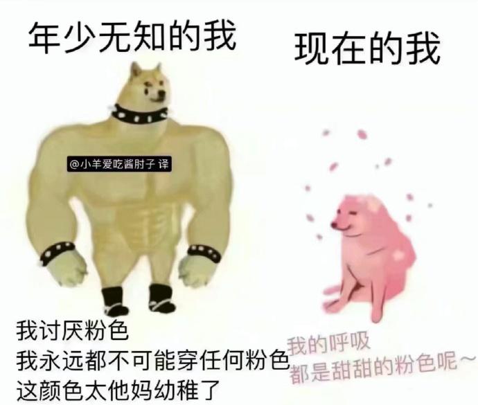 """日刊:健**裁判""""刘太阳""""火了 178的""""刘太阳""""女神范儿惊艳全场 liuliushe.net六六社 第17张"""