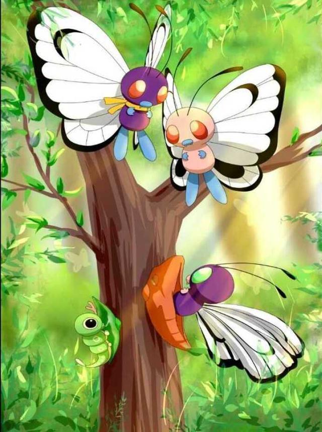 精灵宝可梦日月里面的精灵宝可梦训练师都要去经历的一件事!