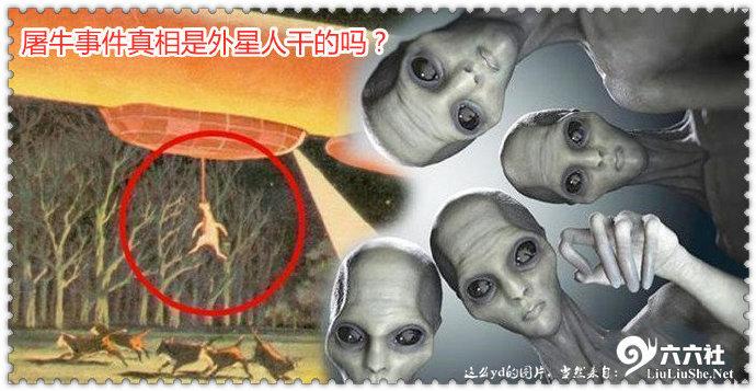 美国屠牛事件真相揭秘 屠牛事件真相是外星人干的吗? liuliushe.net六六社 第2张