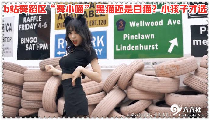 "b站舞蹈区""舞小喵"" 黑猫还是白猫?小孩子才选 liuliushe.net六六社 第1张"