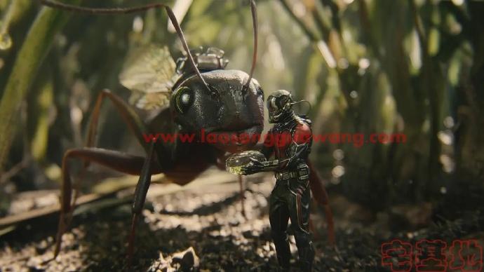 最新电影推荐「蚁人」豆瓣影评:一部温情又有趣的漫威电影,不容错过插图1