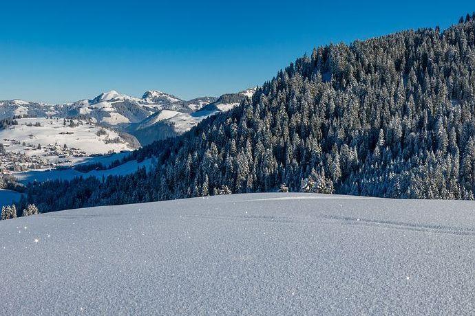 snow-4682266__480