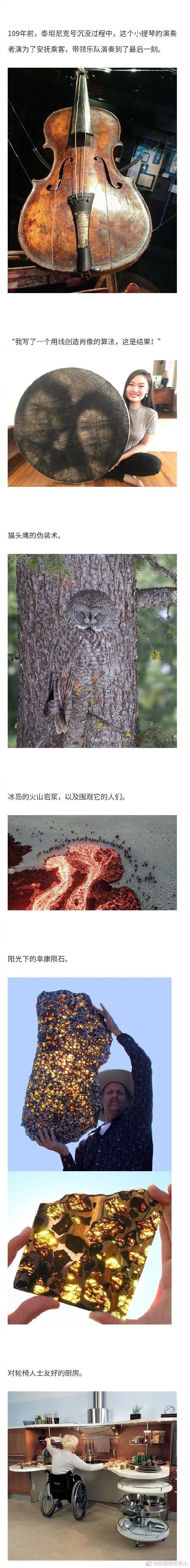网友们po出的各种有趣的图片,有自然中令人惊叹的存在,也有现实中神奇的巧合
