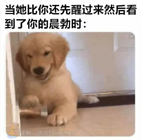 GIF动态图分享0617:仰泳-91-『游乐宫』Youlegong.com 第16张