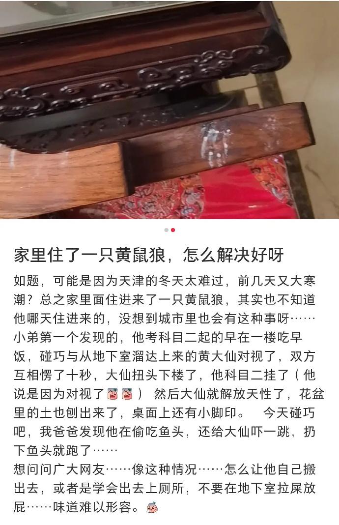 """日刊:三观是哪三观? """"睡过4000人""""的日本富豪遭毒杀案破了 liuliushe.net六六社 第13张"""