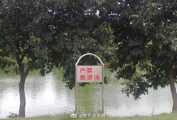 湖边的招牌少了一个字,立马变得超级狂的感觉…