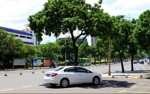 汽车知识:夏天停车,车头朝北,这个讲究竟如此神奇!