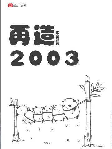 再造2003