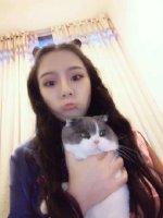 这猫的表情