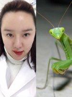 我可能是螳螂精转世