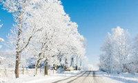 关于下雪的优美句子 下雪有意境的浪漫句子