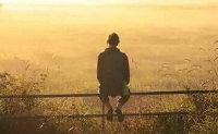 对生活无奈的句子 生活心酸又无奈的句子