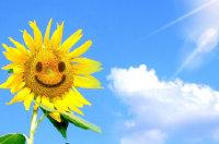 关于乐观的名人名言 关于积极心态的名人名言