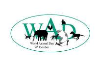 关于世界动物日的句子 世界动物日保护动物的宣传语